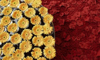 floral_art_exhibition-normal